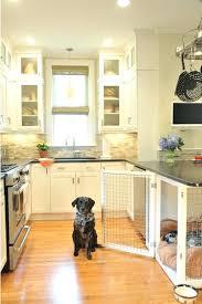 pet friendly house plans pet friendly house plans hungrybuzz info
