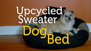 Doggy Beds Upcycle An Old Sweater Into A Dog Bed Diy Youtube
