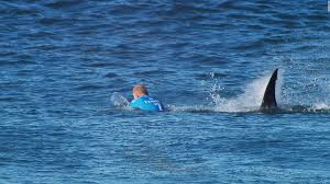 surfer mick fanning changes board from u0027yum yum yellow u0027 cnn