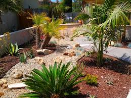 outdoor u0026 garden exciting gravel with concrete walkway and palm