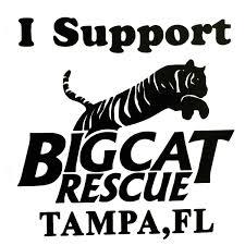 sticker i support big cat rescue