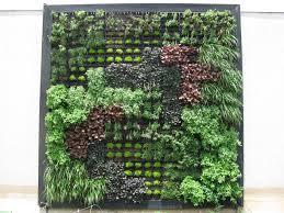living wall overhaul texas a u0026m u0027s green roof project
