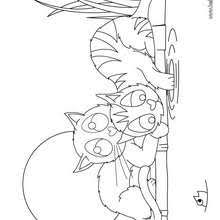 cute kitten coloring pages hellokids com