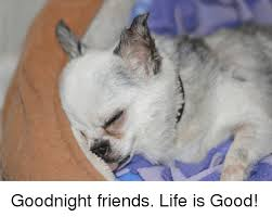 Life Is Good Meme - goodnight friends life is good friends meme on awwmemes com