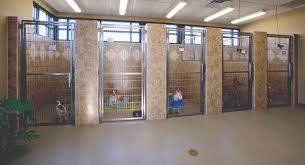 Commercial Flooring Systems Photo Commercial Flooring Systems Images Canine Rolled Rubber