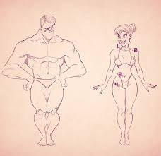 How To Draw Female Anatomy Cartoon Fundamentals How To Draw The Female Form