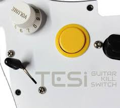tesi dito 24mm arcade button momentary guitar kill switch solid