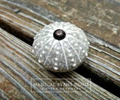 S And W Cabinets Coastal Style Round Ceramic Knob In Sand W Grey U0026 White Accents