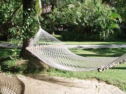 how to choose a hammock homeclick