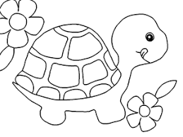 baby turtle coloring pages 22936 bestofcoloring