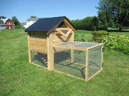 Backyard Chicken Houses by The Ultimate Backyard Chicken Coop With Run By Infinite Cedar