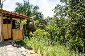 eco friendly home decor building an eco friendly green and sustainable home our blog