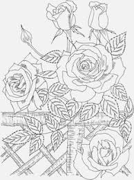25 coloring pages ideas