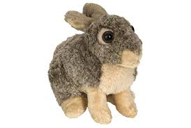 stuffed bunny rabbit stuffed animal bunny rabbit toys