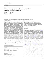 wood decaying fungi in the forest conservation needs and - Bauchspeicheldr Senschw Che