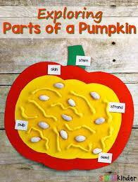 exploring the parts of a pumpkin simply kinder