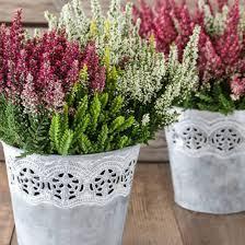 pflanzen fã r den balkon bildergebnis für herbstdeko balkon herbst winterdeko auf dem
