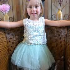 little girls dress flower dress toddler dress girls dress
