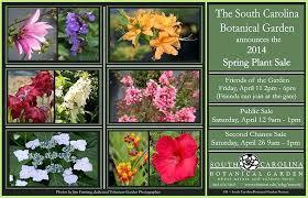 Botanical Gardens South Carolina Landscaping Plants South Carolina Botanical Garden Plant