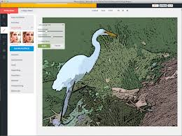 Color Image Online by The 9 Best Browser Based Photo Editors Available Today
