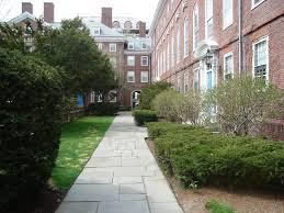 make your house awesome with walkway ideas u2013 awesome house
