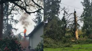 lightning strike sets tree on in springfield kval