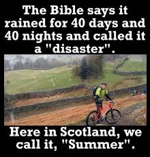 Funny Scottish Memes - 55 best just scottish things images on pinterest plaid scotch and