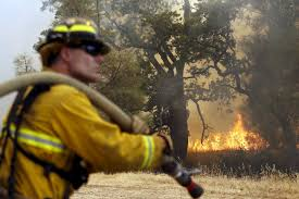 California Wildfire Cat by Why California U0027s Fires Are Burning Longer And Harder Pbs Newshour