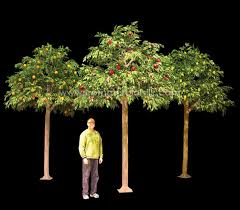 artificial fruit tree grove commercial silk int l