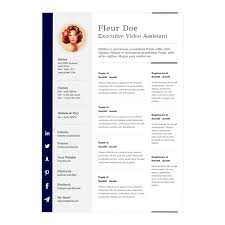 Single Page Resume Template Resume Template Free Executive Templates In One Page 81