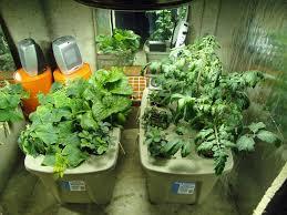 hydroponic gardening systems gardening ideas