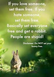 Silly Rabbit Meme - https www facebook com 587694858040911 photos a