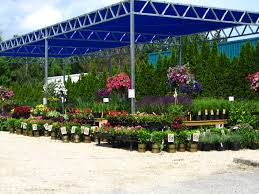 amazing the garden center interior design for home remodeling