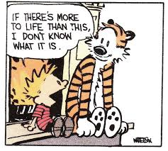 friendship quote calvin and hobbes bill watterson by dangerdust
