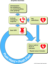 part 5 basic life support circulation