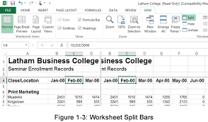 creating multiple views and freezing frames in excel worksheets