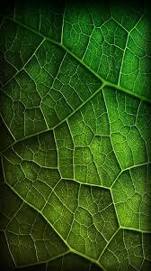 Green Shades by Wowwindows8 Best Samsung Galaxy S3 Wallpaper 27 Patterns Shapes