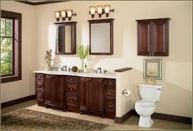 bathroom cabinet storage ideas above toilet storage in gray toilet storage cabinet ikea home