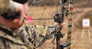 compound bows 2016 selection guide reviews