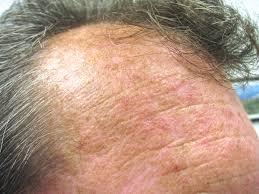 general dermatology specialists in dermatology