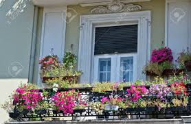 old balcony with flowers stock photo picture and royalty free