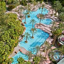 birthday las vegas vacation at flamingo las vegas hotel and casino