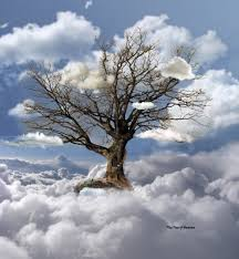 the tree of heaven by egypt04 on deviantart trees