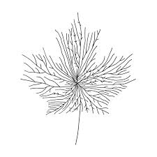 image result for geometric plant drawing tattoos pinterest