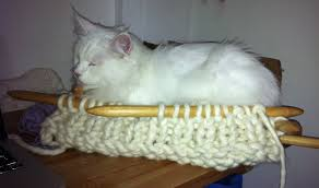 knitting pattern cat cave cat baskets at cool for cats uk knitting revolution