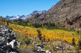 places fall colors california california lens