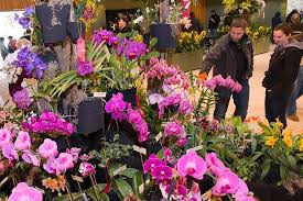 Botanic Garden Glencoe Botanic Garden Orchid Show Chicago Botanic Garden Glencoe From