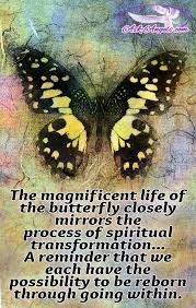 196 best spiritual growth images on spiritual growth