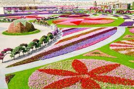 dubai miracle garden world u0027s biggest flower garden