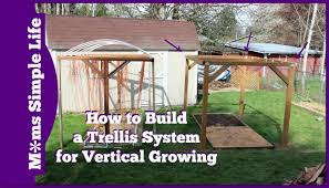 how to build trellis system for vertical growing youtube